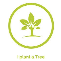 media/image/Icon-i-plant-a-tree-mobil.jpg
